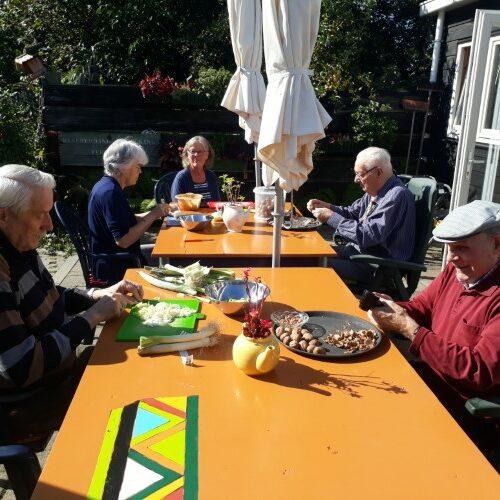 gastouderopvang kinderen opvang ouderen theetuin koewacht terras zorg